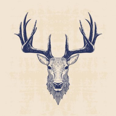 Deer head, vintage hand drawn illustration stock vector