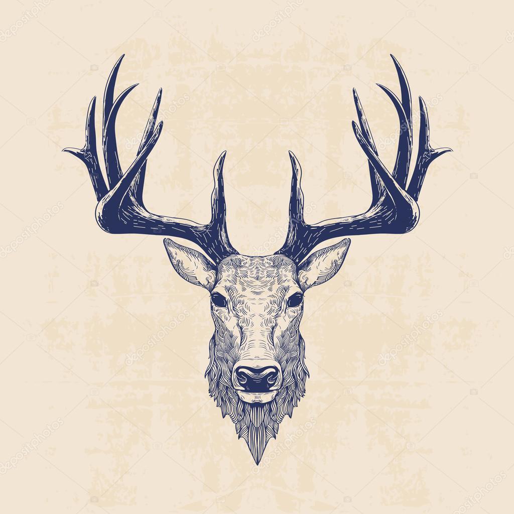 Image De Art Deer And Drawing: Stock Vector © Blauananas #78475128