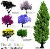 Fotografia Set di sagome di alberi floreali. Illustrazione di vettore