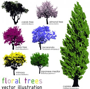 Set of floral trees silhouettes. Vector illustration stock vector