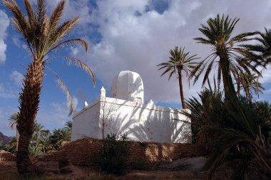 Palm grove in Figuig in Morocco