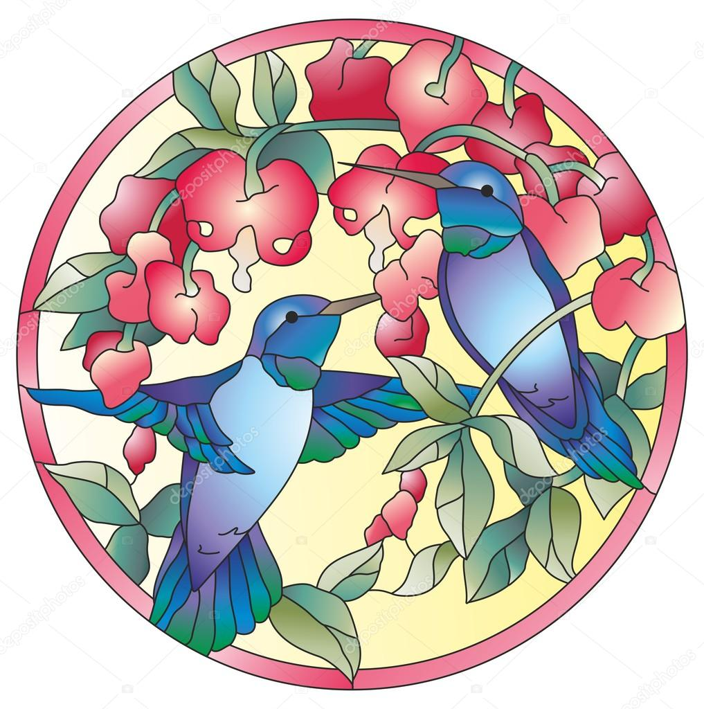 Stained glass window colibri