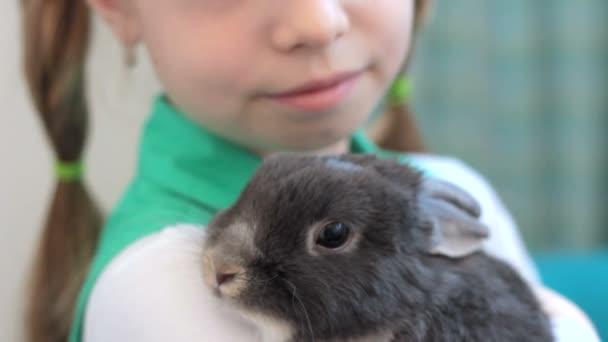 kleines süßes Kaninchen auf Mädchenhänden