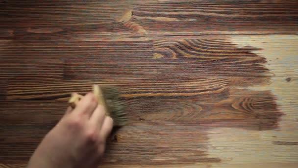 Dipingere pennello pittura tavolo in legno con mordente u video