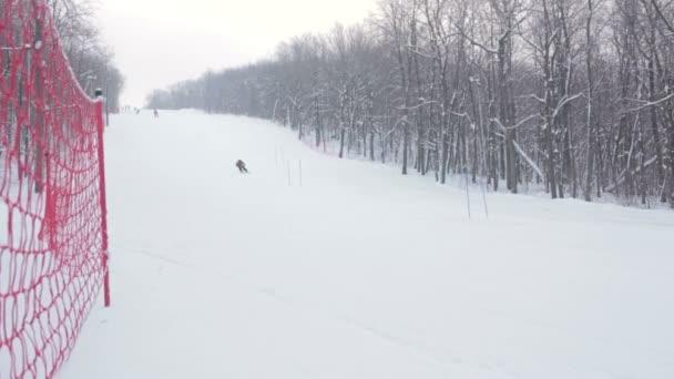 Lyžař sjezdového lyžování v lese