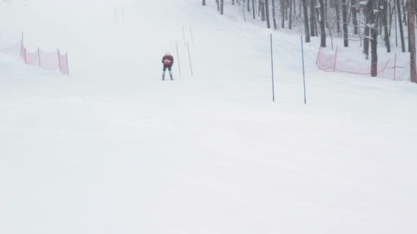 Detail lyžař sjezdového lyžování v lese