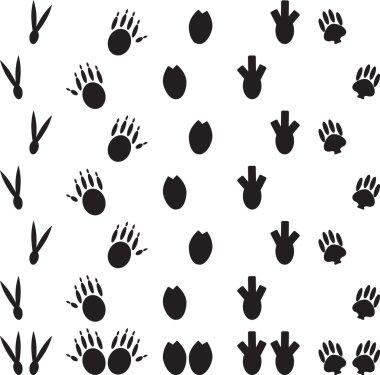 Animal foot print set illustration