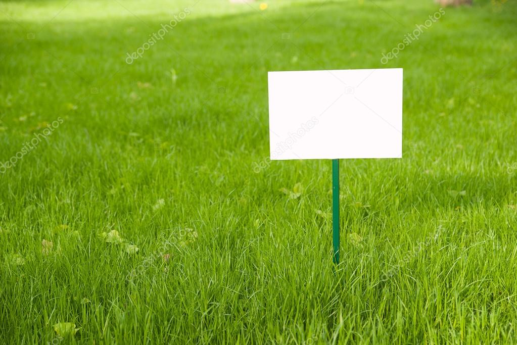 Lawn with green grass and  plaque on the lawn