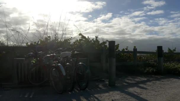 Stranddűnékre parkolt kerékpárok