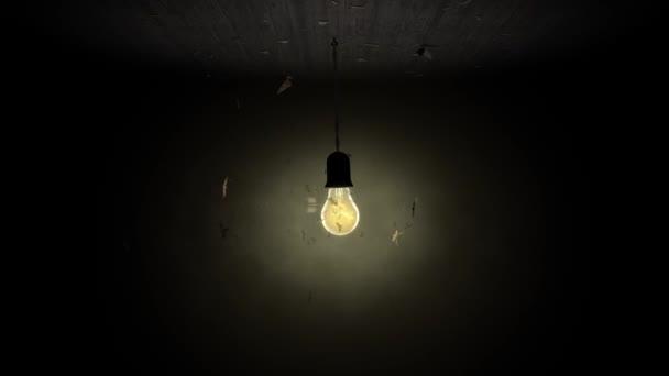 Jako můry žárovky