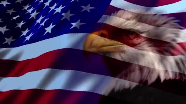 Amerikai zászló sas