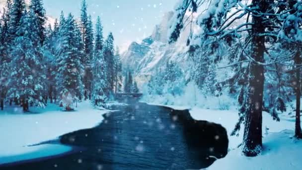 Zimní řeka protékající borovic Zoom