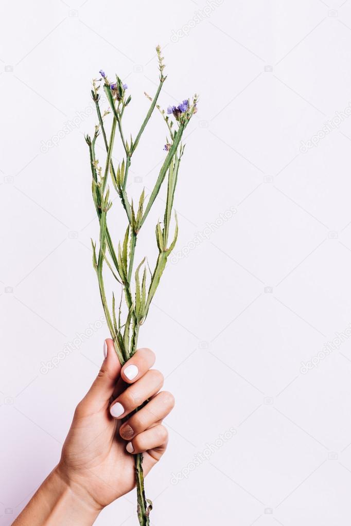 blumenstrauss trocknen blumenstraua zu ohne blumen in eine frau mit einer manika 1 4 re aufs hand stockfoto lassen