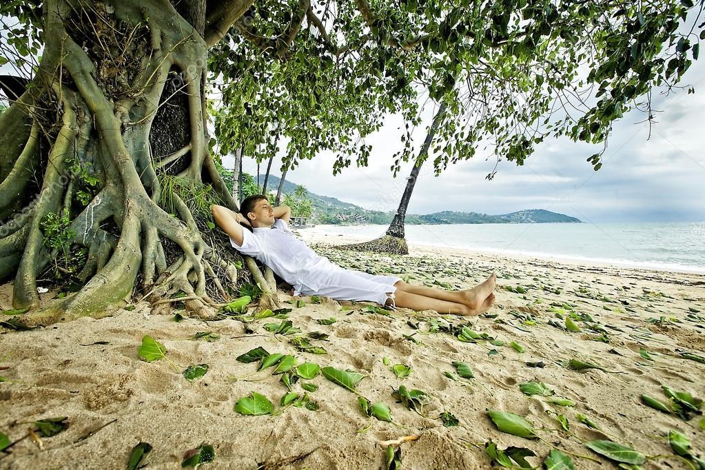 Картинки по запросу спит у пальмы