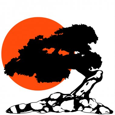 The Bonsai Silhouette with sun and rock