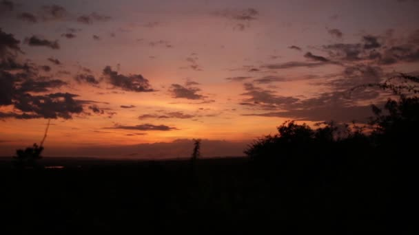 Pestré africké slunce se stromy v popředí