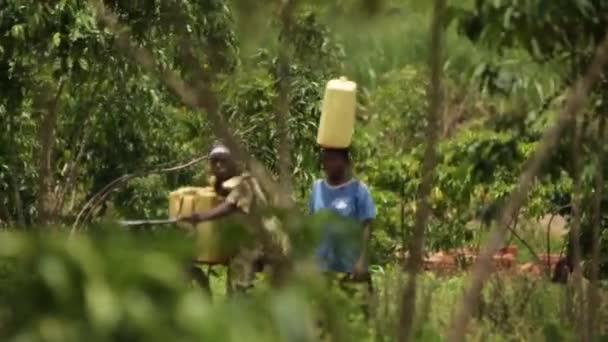 Dvě dámy procházky africké bush přenášení vody - jeden s kolo, Masindi, Uganda, září 2013