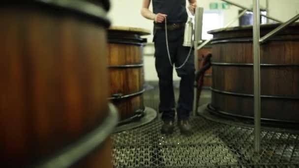 Whisky worker testing fermentation process