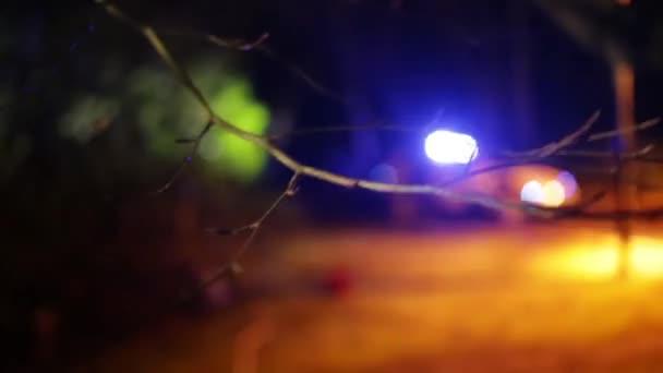 Modrá policejní zhasnout zaměření s větev stromu v popředí