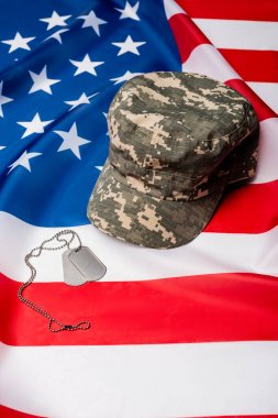 Military cap and dog tags on american flag stock vector