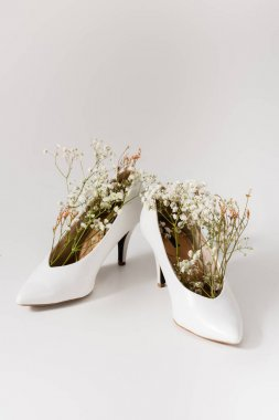 Heeled shoes with gypsophila flowers on white stock vector
