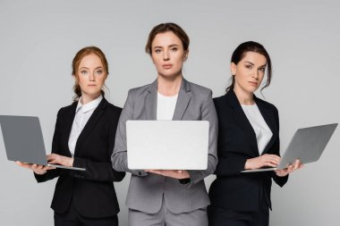 Adult businesswomen with laptops looking at camera isolated on grey stock vector