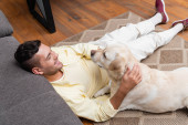 high angle view of positive man sitting on carpet near sofa and petting labrador dog