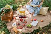 Oříznutý pohled na mladou ženu držící knihu během pikniku s vínem a jídlem v parku
