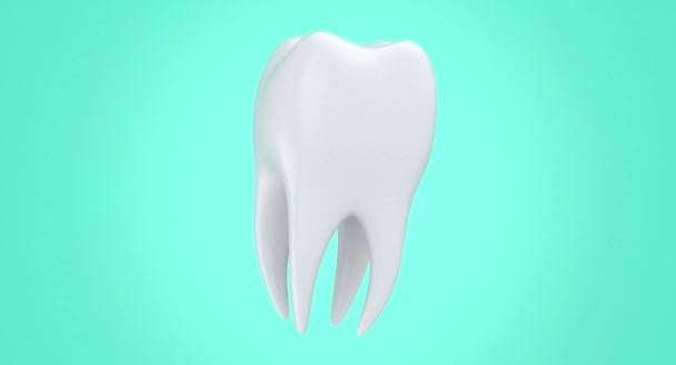 Isolated rotating 3d tooth model. Soaring beautiful white dental 3d rendering