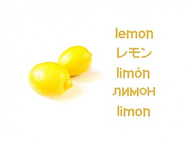 Learning Many Language LEMON