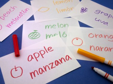 Making Language Flash Cards; Spanish