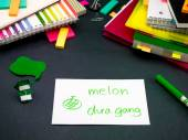 Apprendimento di nuova lingua rendendo originale schede Flash; Vietnamita