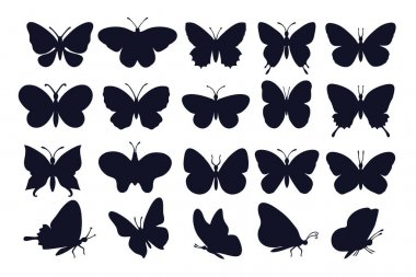 Butterflies silhouettes. Spring butterfly silhouette collection. Vector butterfly set. Different types of butterflies icons. icon