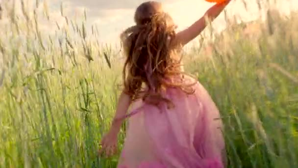 Young girl running through a wheat field with colour balloons during sunset