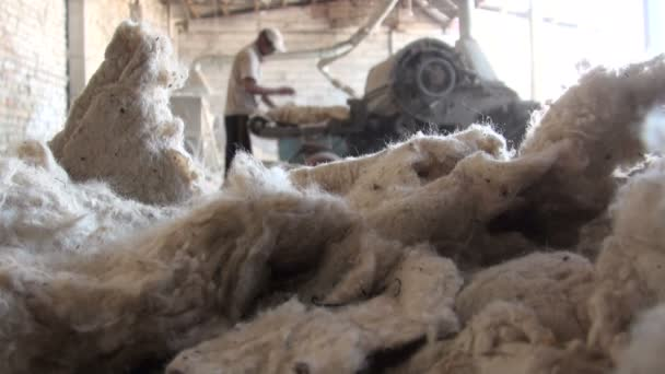 man operates a cotton cleaning machine