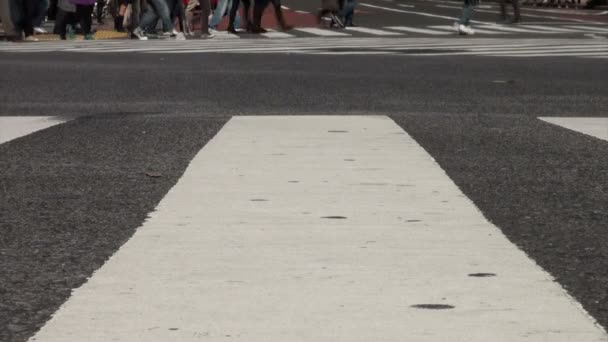 Feet and legs of people crossing street