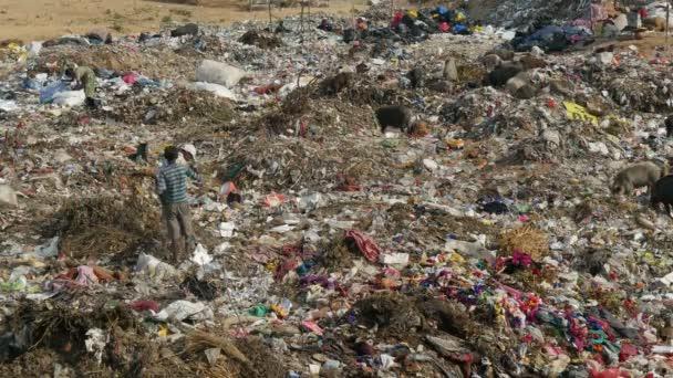 lidé shromáždí položky na odpadky dum