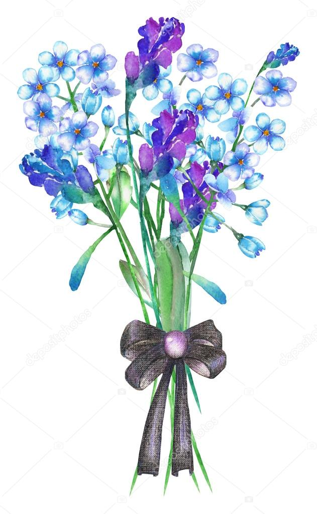 An illustration with a bouquet of the beautiful watercolor blue forget-me-not flowers (Myosotis), lavender flowers and spikelets, decorated by a bow