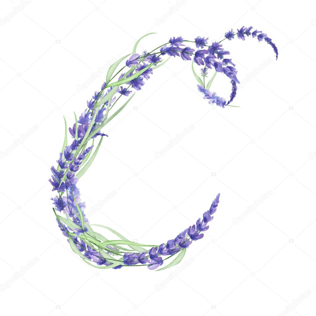 Capital Letter C Of Watercolor Lavender Flowers Isolated Hand Drawn