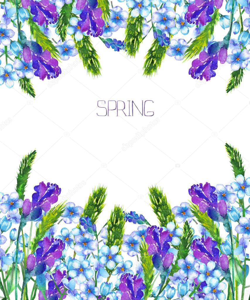 Frame border, template for postcard, decorative place (banner) with an ornament of the blue forget-me-not flowers (Myosotis), lavender flowers and spikelets on a white background, greeting card or invitation