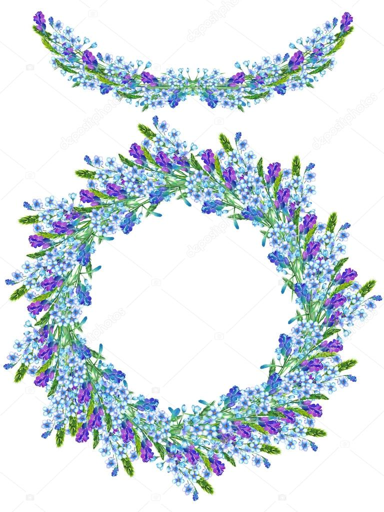 Frame border, garland and wreath of the watercolor blue forget-me-not flowers (Myosotis), lavender flowers and spikelets, painted in a watercolor, a greeting card, decoration postcard or invitation