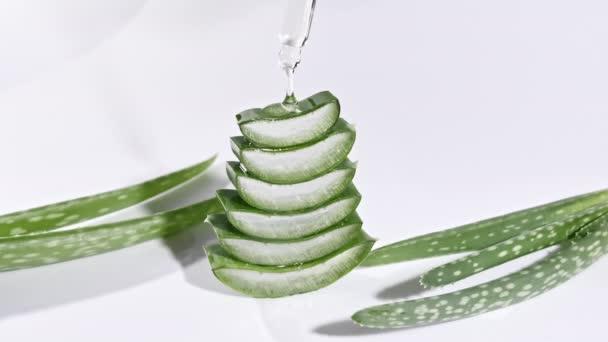 Motion of Aloe Vera plátkované plátky. Kosmetická pipeta s kapkami oleje Aloe Vera detailní. Přírodní lékařská rostlina. Organická kosmetika, alternativní medicína.