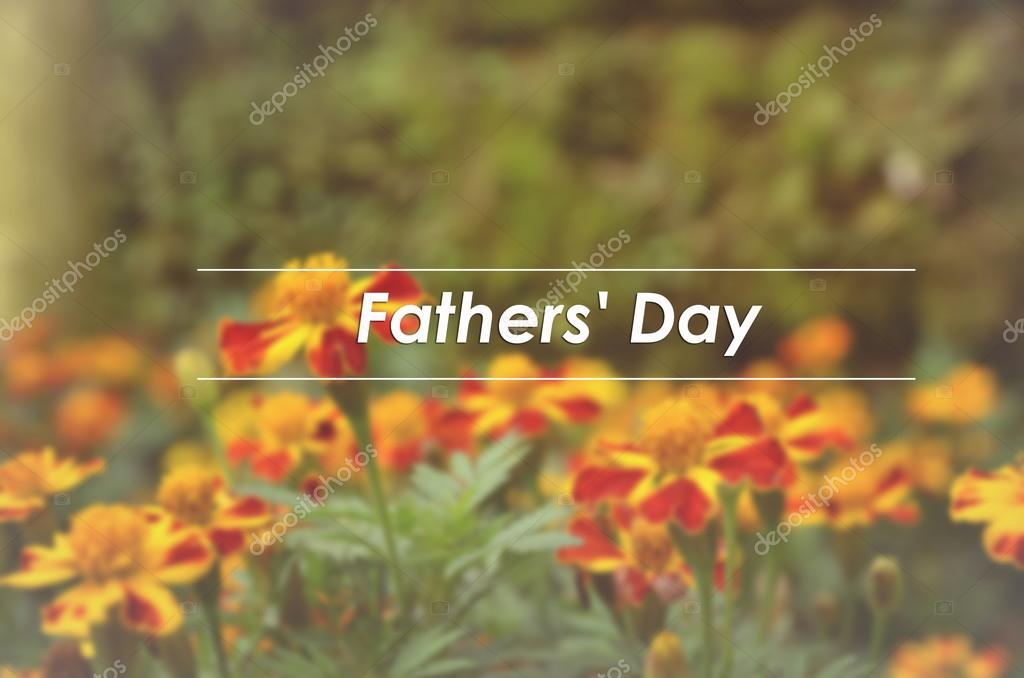 Blurred and classic look French marigolds (Tagetes patula) flower background with word FATHER'S DAY — Photo by ...