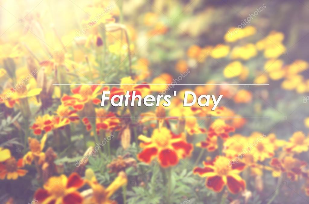 Blurred image background of French marigolds (Tagetes patula) flower with word FATHER'S DAY — Photo by ...