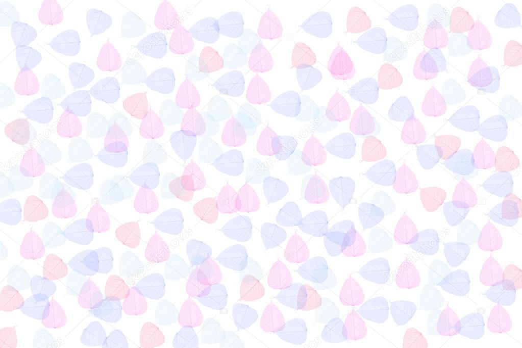 La pequeña hoja color rosa y azul como fondo — Foto de stock ...