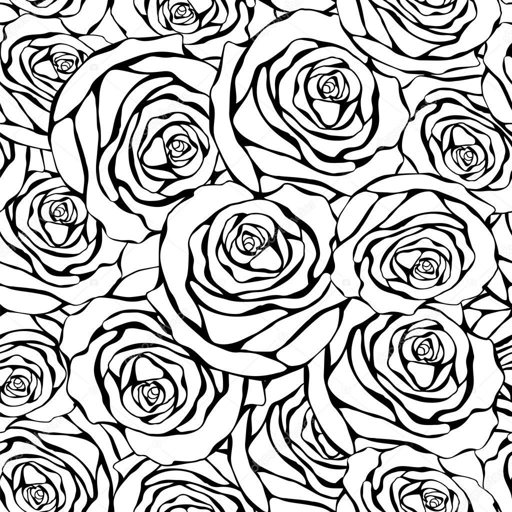Rose Nere Su Sfondo Bianco Foto Stock Yulianas 101343800