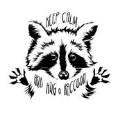 vector hug raccoon