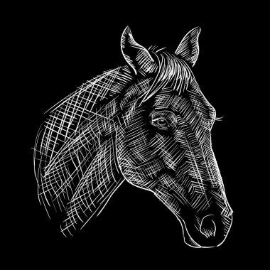 sketch of a horses head