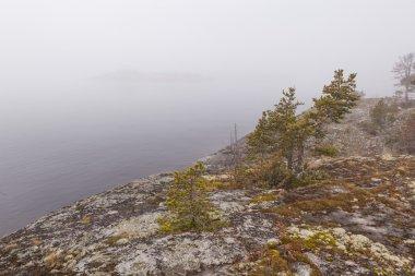 Fog on stony coast of lake.  spring landscape