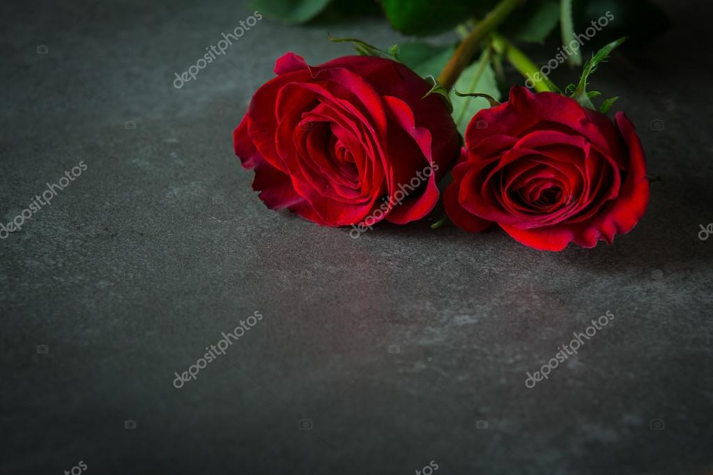 two red roses on slate tile stock photo cookiesfordevo 69268187